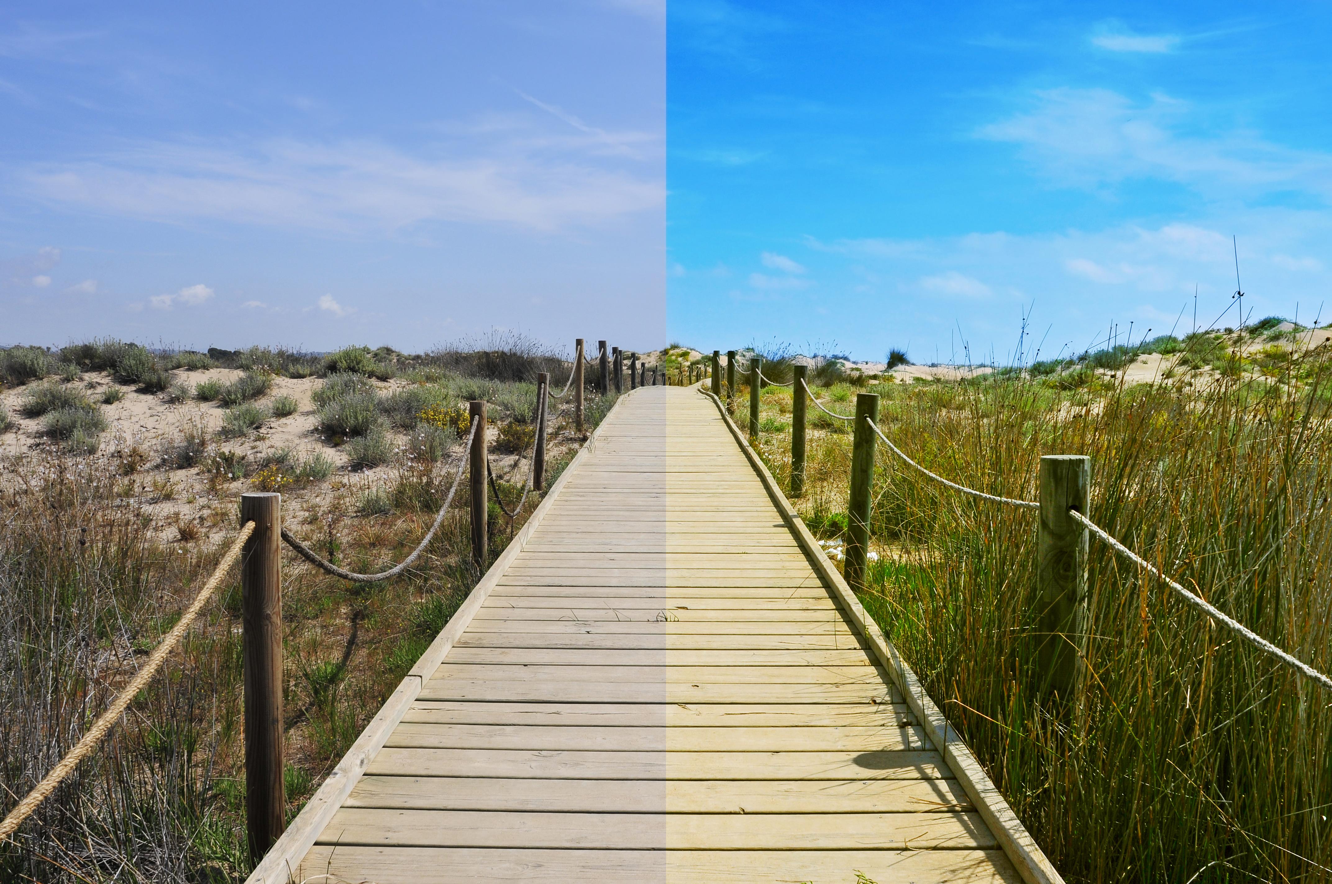 Fotografía antes y después de editar